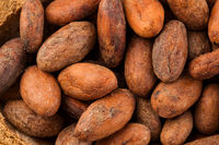Unpeeled cocoa beans background from above.