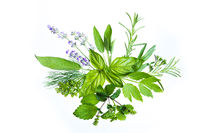 Combination of flavoures and tastes in unusual herbal bouquet