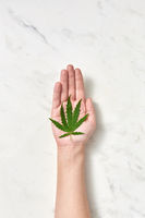 Woman's hand with a green fresh marijuana leaf on a marble gray background.