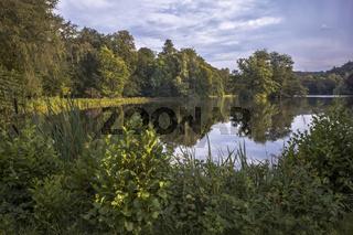Greizer Park - Binsenteich im Maerz