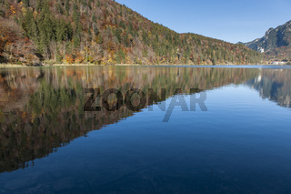 View over the Lake Alpsee in Bavaria