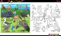 cartoon birds animal characters group coloring book page