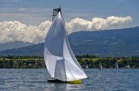 Segelboot mit gesetztem Mastkopf-Spinnaker auf einem See