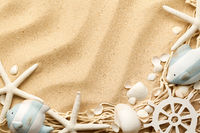 Marine Life Concept On Sand Background