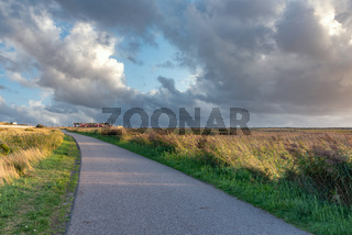 Wander und Fahrradweg durch die Salzwiesen bei Sankt Peter-Ording