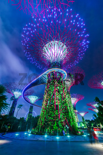 Garden by the Bay on in Singapore