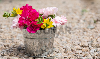 a single bucket full of flowers in nature