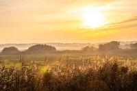 Morgenstimmung über den Wiesen und der Landschaft von Borkum