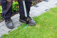 Gardening - edging lawn along the foothpath using garden tool