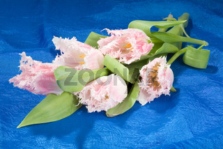 Bouquet Of Flowers And Fabric