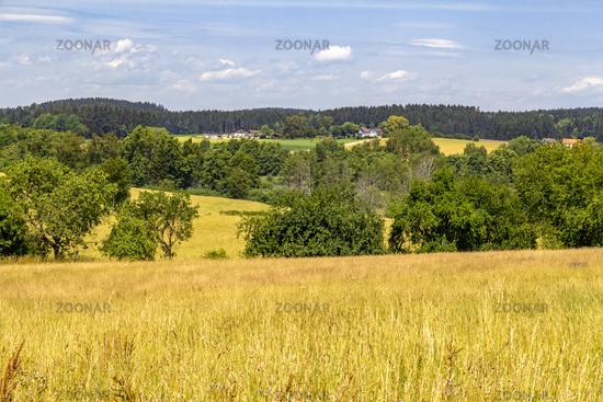 Bavarian Forest scenery