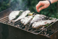 Man's hand salt fish. He is cooking delicious and fresh grilled fish with lemon on the Barbeque grill at the garden in summer. Selective focus macro shot with shallow DOF