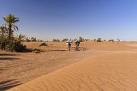 Kamelkarawane in der Sahara