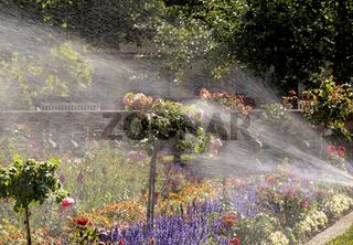 Wasserfontänen im Rosengarten, Schloss Ludwigsburg