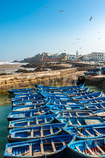 Fishing boats in Essaouira port, Morocco