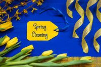 Spring Flowers Decoration, Branch, Ribbon, Label With Text Spring Cleaning