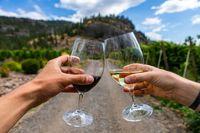 winery vineyards wine outdoor tasting