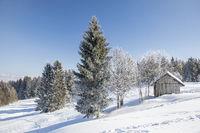 Winter landscape with hut