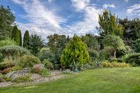 Beautiful summer garden concept