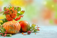 Pumpkins, bouquet of mountain ash and viburnum branches. Autumn card.