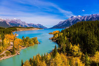Shores of Abraham Lake