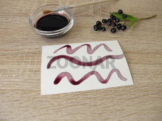 Malen mit schwarz violetter Tinte aus Ligusterbeeren