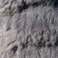 Luxus lila graues Kaninchenfell als Hintergrund