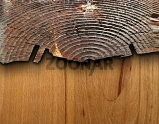 interesting combined wood texture with old  tree stump and veneer