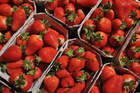 Strawberries in a  cardboard cup _ Erbeeren in einer Pappschale