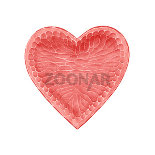 Pink wooden heart shaped bowl isolated on white