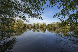 Lake Moenchbruchweiher in autumn