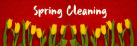 Baner Of Yellow Tulip Flowers, Red Background, Text Spring Cleaning