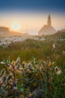 Greenland Ilulissat Zion Church in sunset with flowers