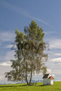 Wiesenkapelle