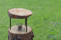 Simple and minimalist do it yourself homemade bird feeder made of tree trunk and branches with fat ball in the middle fixed with long stainless steel nails standing in garden with green grass in background