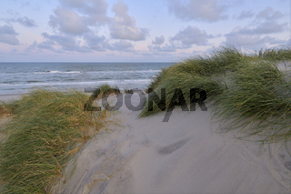 Dune landscape with the north sea in the morning