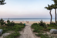small pathway to Gyeongpo beach