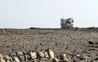 Extrem aride Steinwüste, Danakil Depression, Afar Dreieck, Äthiopien
