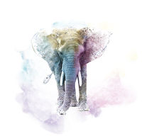 Watercolor Elephant. Digital illustration on white background.