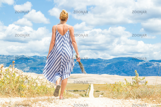 Rear view of woman in summer dress holding bouquet of lavender flowers while walking outdoor through dry rocky Mediterranean Croatian coast lanscape on Pag island in summertime