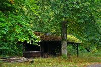 Hütte im Herbstwald im Oktober