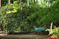 A green bench in a public park among lush greenery.
