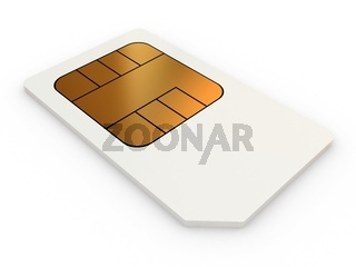 Mini-SIM card