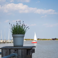 Sailing boat on lake neusiedlersee in burgenland