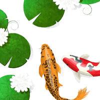 White lotus and koi fish watercolor