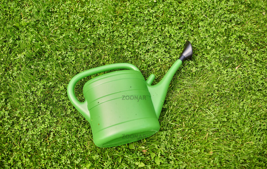 green watering can on grass at summer garden