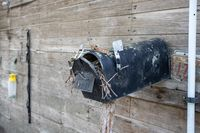 Old Abandoned country mail box with bird nest inside it on the side of a shed