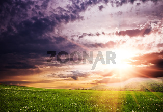 Meadows and sky