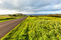 Road in Easter Island, Rapa Nui. Chile.