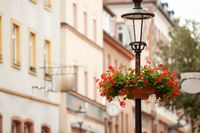 Street lamp with flowers and a street in the background.